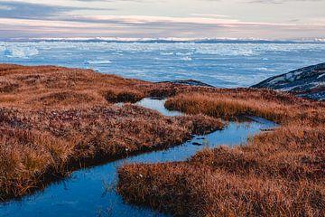 Helder water, duinplanten voor baai met ijsschotsen in Groenland van Martijn Smeets
