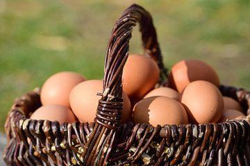 Op een houten basis is er een rieten mandje met eieren binnenin. van Ulrike Leone