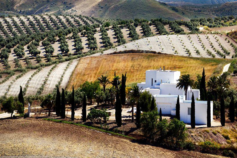 Andalucië van Harrie Muis