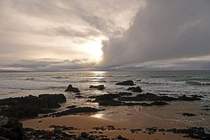 Zonsopgang bij strand van Nugget Point in Nieuw Zeeland
