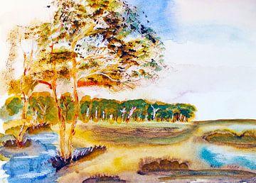 Moorlandschaft von M.A. Ziehr