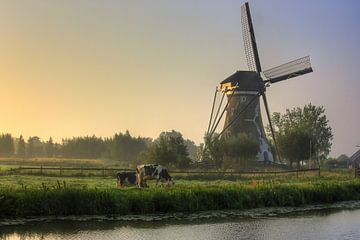 Landschap De Hooge Boezem, Haastrecht van Stephan Neven