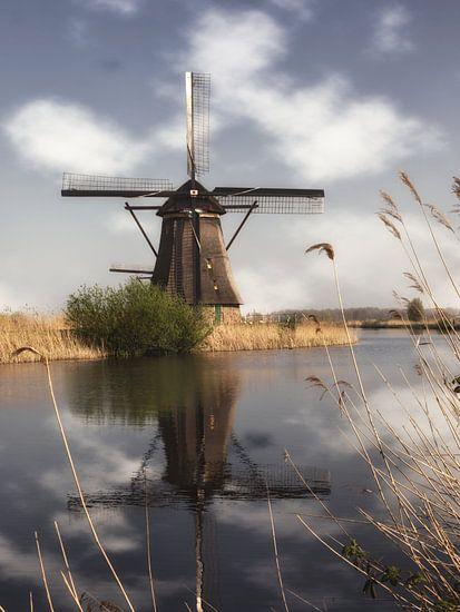 Eine Mühle in Kinderdijk