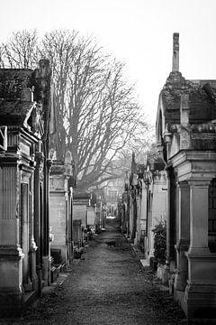 Montmatre begraafplaats van Esther Faber