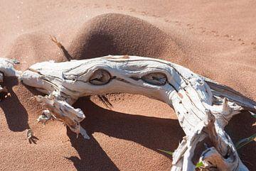 Houten krab van Miranda Zwijgers