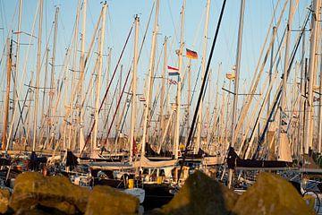 Boten in de haven van Terschelling van Bart Lindenhovius