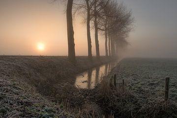 Sonnenaufgang mit Nebel von Moetwil en van Dijk - Fotografie