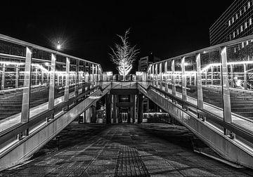 Moreelsebrug van Robin Pics (verliefd op Utrecht)
