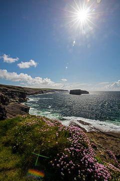 Westküste Irland von Andreas Müller