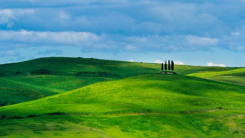 Springtime in Val d'Orcia, Tuscany