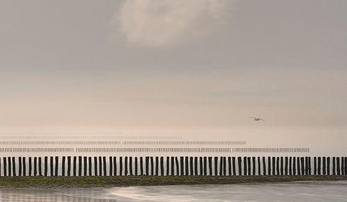 0427 Flight over the poles