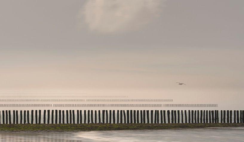 0427 Flight over the poles van Adrien Hendrickx