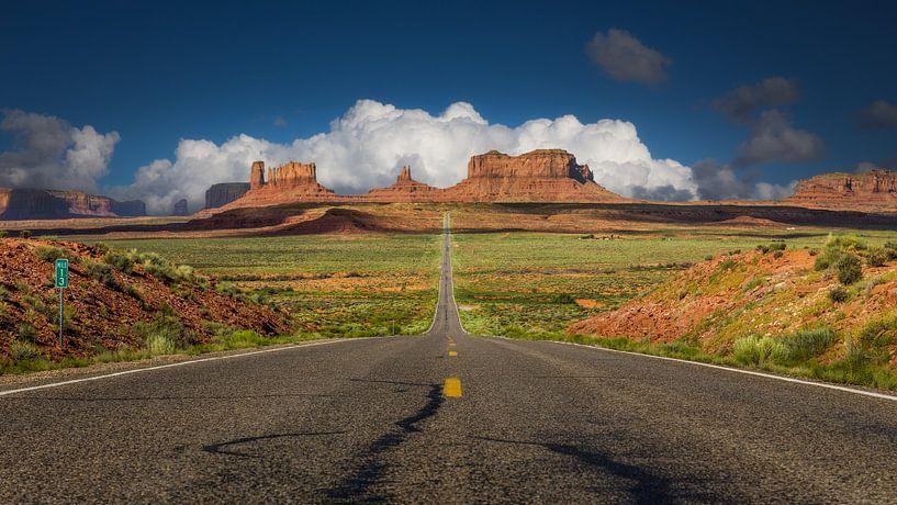 Road to Monument Valley van Edwin Mooijaart