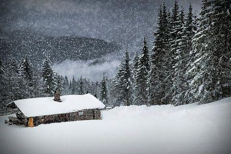 Bavarian Winter's Tale II