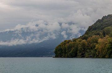 Uitzicht van Spiez (Zwitserland), met bergen, bos, en helder blauw water. van Angelo de Bruin