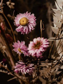 Florales Triptychon Nr. 2 von Alexander Tromp