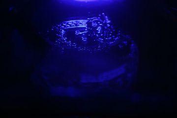 Onderwater van Ilse Rood