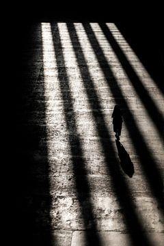 Licht en schaduw van Bob Janssen
