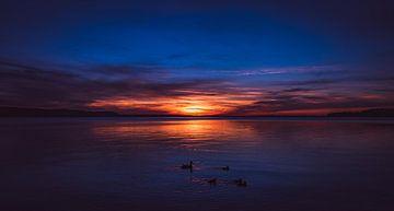 Sonnenuntergang in Polen mit einer Familie Enten im Vordergrund von Off World Jack