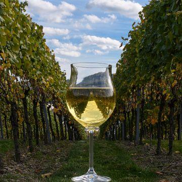 Glas Weißwein von Heinz Grates