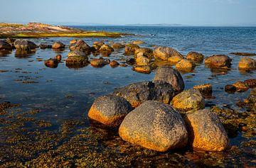 Küste der schottischen Insel Arran - 1 von Adelheid Smitt