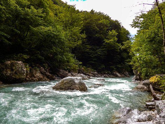 Das Wildwasser der Tolminka