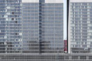 Rotterdam, De Rotterdam van maron branderhorst