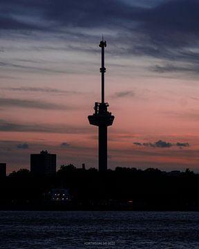 Euromast-Silhouette mit einem wunderschönen rosa Sonnenuntergang von Yordy Baglieto