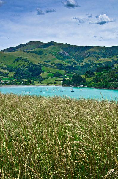 Banks Peninsula-French Farm Bay - Nieuw Zeeland van Ricardo Bouman | Fotografie