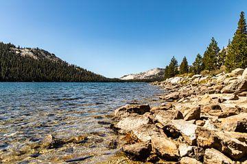 Yosemite National park von Martijn Bravenboer