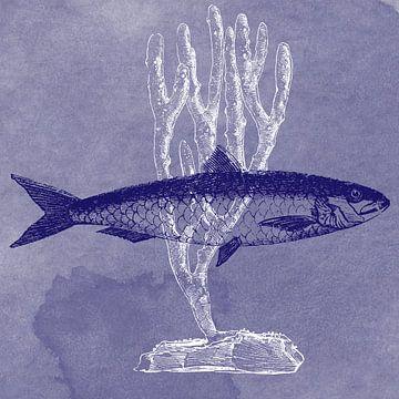 Delfter Blau Sardine von Jadzia Klimkiewicz