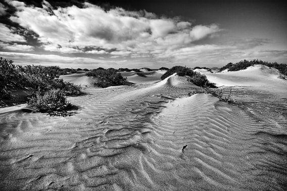 Duinen op het strand van Lanzarote