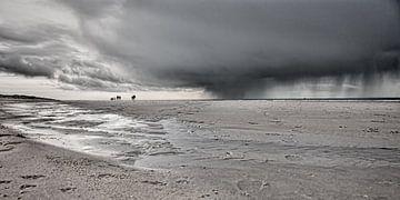 een strandwandeling van eric van der eijk