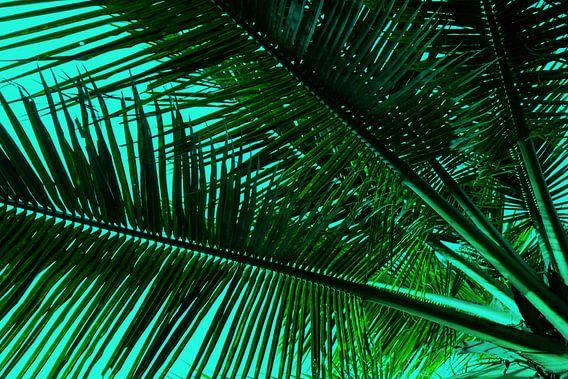 GREENERY PALM LEAVES v2