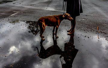 The Rains #03 van Mario van Middendorf
