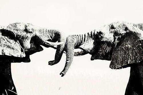 Macht der Elefanten