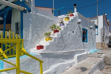 Escalier grec avec des plantes sur Rinus Lasschuyt Fotografie