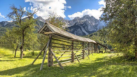 Sloveens boeren landschap