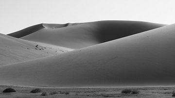 Dünen von Sossusvlei bei Sonnenaufgang von Felix Sedney