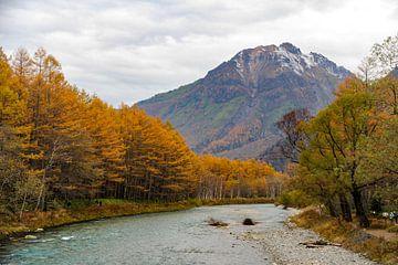 Japanse alpen van
