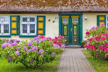 Schönes altes Reetdachhaus in Zingst von Christian Müringer