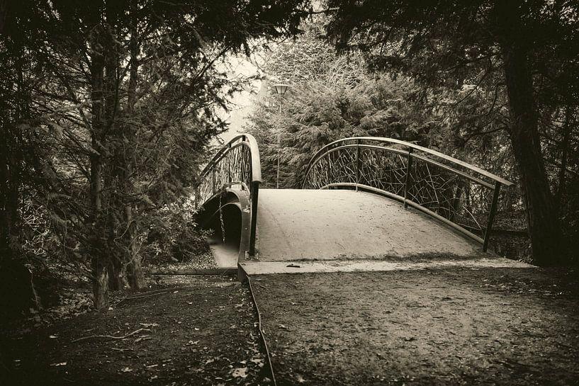 Brugske in Tilburgs Wilhelminapark van Jan van der Knaap