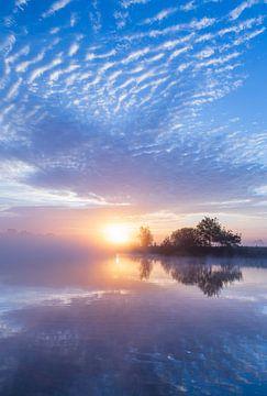 Nebliger Sonnenaufgang in Zeeuws-Vlaanderen