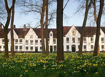 Begijnhof Ten Wijngaerde Brugge von joas wilzing