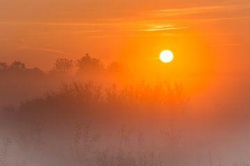 Zonsopgang in de polder bij Uithoorn van Peet Romijn