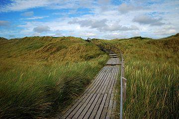 Weg zum Strand van Hannes Cmarits