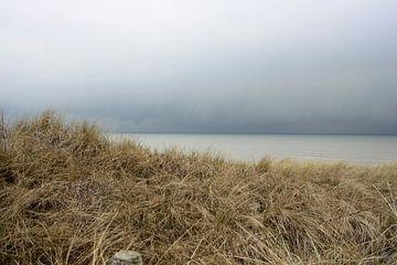 Storm op komst 3 van Bas van Veen