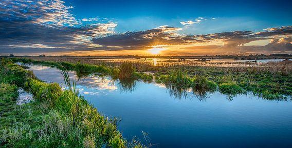 Groninger landschap van Reint van Wijk
