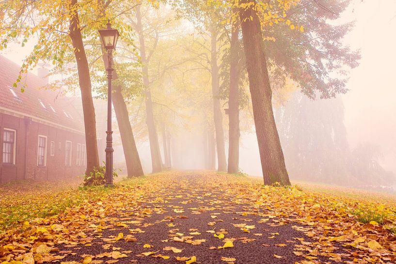 Herfst & mist van Chris Snoek