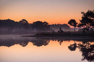 Strabrechtse Heide 245 von Deshamer